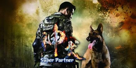 super-partner-_80711440065245